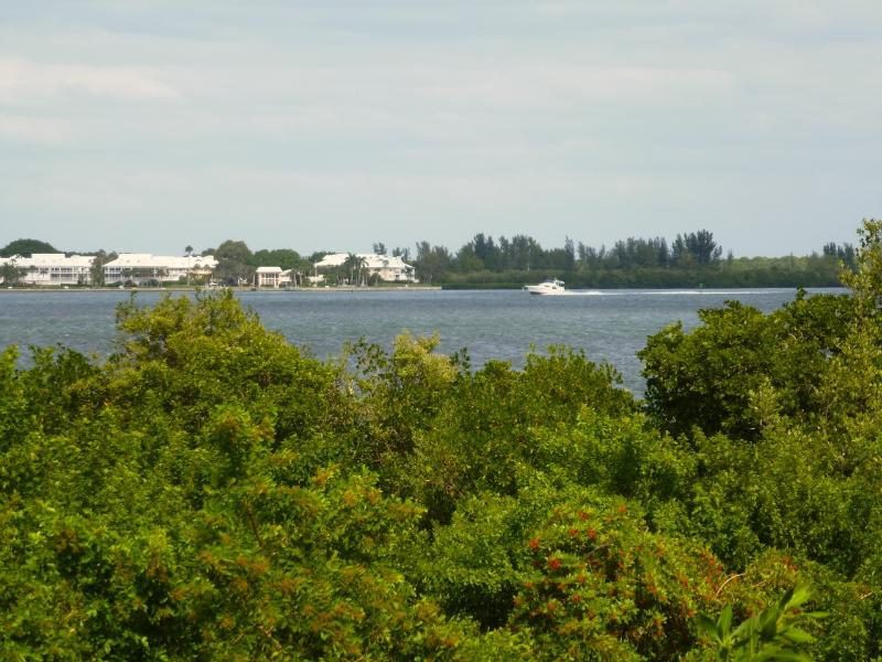 Views of Placida Harbor from the porch - Seagrape Escape!   Bayview Beauty + FREE Kayaks! - Little Gasparilla Island - rentals