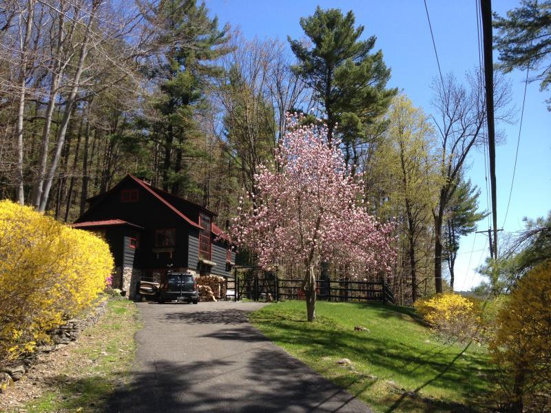 front up large driveway - Woodstock Stone Cottage Swim Lake 3 ski resorts 2 - Woodstock - rentals