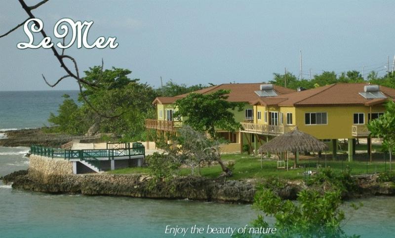 Le Mer - Le Mer Oceanfront Villa - Lucea - rentals