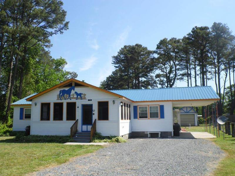 Horseshoe Haven - Image 1 - Chincoteague Island - rentals