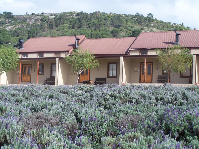 Cottages, 8 available with 2 bedrooms each for up to 5 guests per cottage. Farmhouse with 6 bedrooms - Nine Oaks Self-catering Accommodation - Paarl - rentals