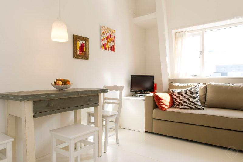 Living Room Overview Amstel Fab Apartment Amsterdam - Amstel Fab apartment Amsterdam - Amsterdam - rentals