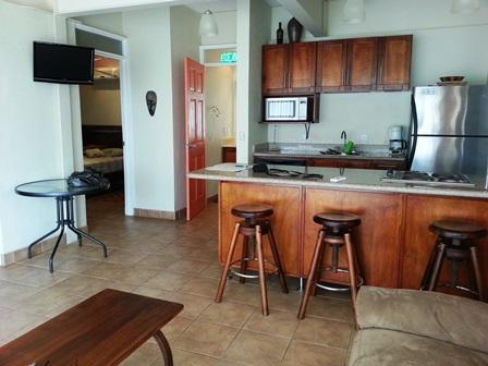 Living room - Charming 2 bedroom apartment in Tucanes Condomini - Playa Panama - rentals