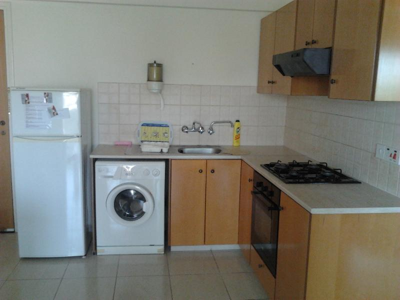 Apt Cepheus,1 bedroom in Makenzie/Larnaca - Image 1 - Larnaca District - rentals