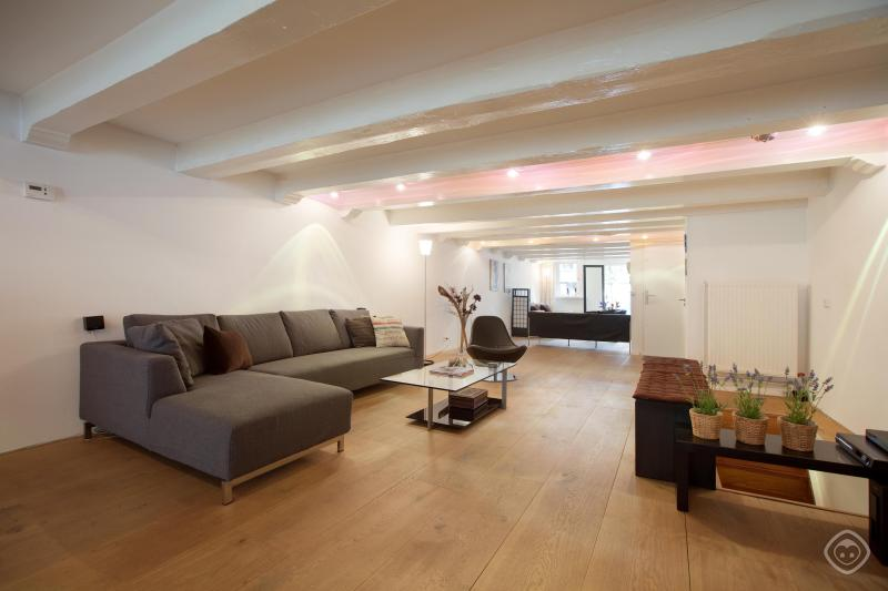Living Room Brewers Loft Apartment Amsterdam - Brewers Loft apartment Amsterdam - Amsterdam - rentals