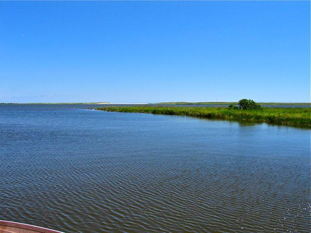 Chilmark Pond Water View! (317) - Image 1 - Massachusetts - rentals