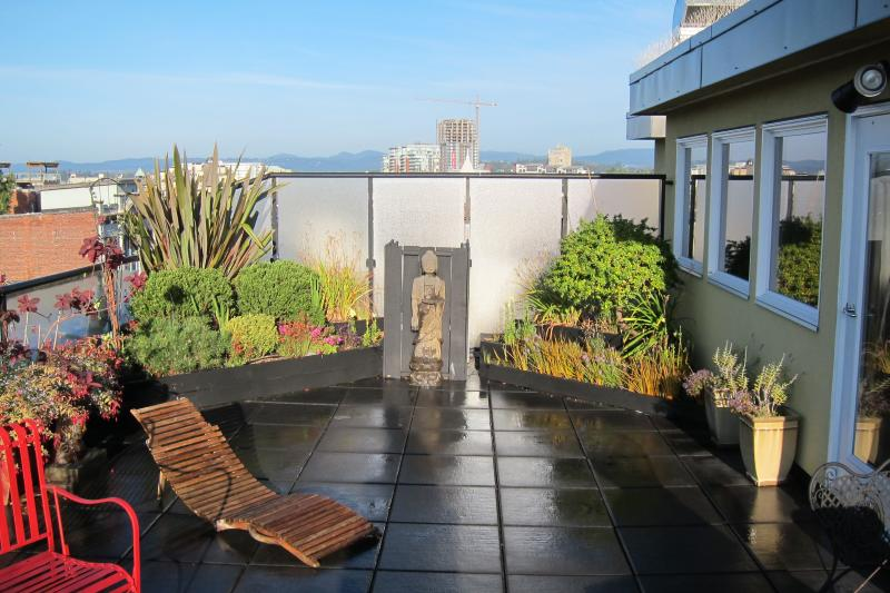 Private 800 sq ft roof terrace and garden. Our hidden Gem! - Two Storey Heritage Penthouse in the Heart of Vict - Victoria - rentals