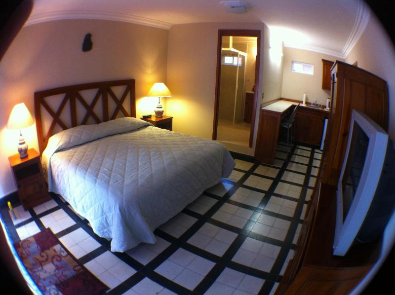 Suite with bathroom and kitchenette - Clean & modern Suite w/ kitchenette- Puebla,Centro - Puebla - rentals