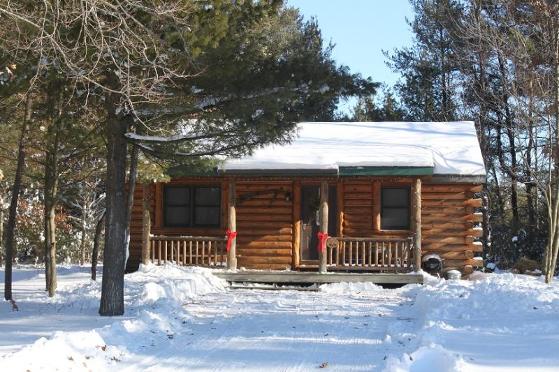 Winter Getaway - open year-round! - Log Cabin with Gas Stove - Pet friendly - New Lisbon - rentals
