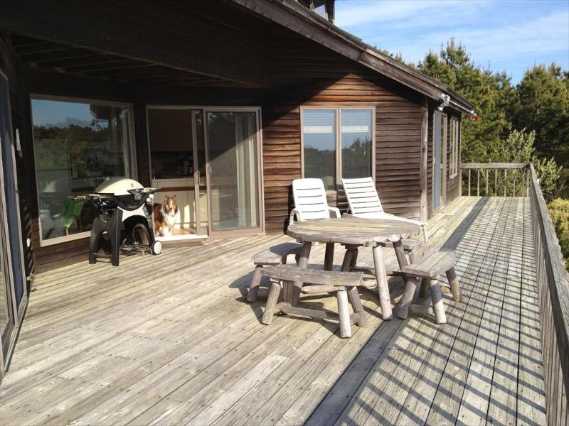 Shearwater Contemporary with Bay Views! 115621 - Image 1 - Truro - rentals