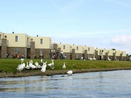 RCN De Schotsman ~ RA37245 - Image 1 - Kamperland - rentals