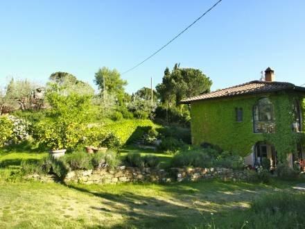 Vittoria ~ RA34411 - Image 1 - Reggello - rentals