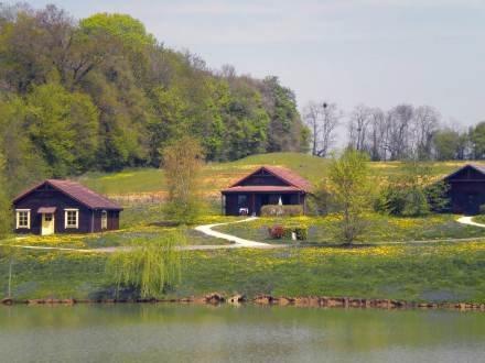 Le Grand Bois Cottage Grand Espace- 4 pièces 8 pax ~ RA26179 - Image 1 - Magny-Cours - rentals