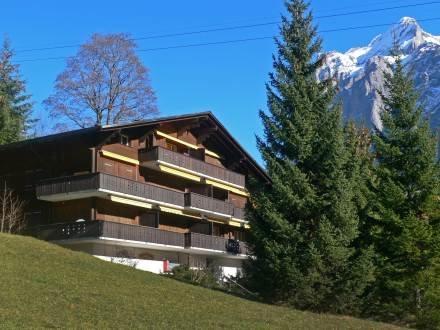 Chalet Bodmi Sunne ~ RA10079 - Image 1 - Grindelwald - rentals