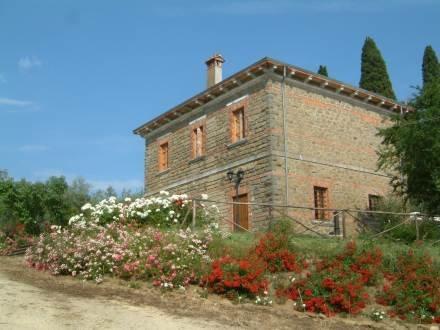 Villa Maiano ~ RA34827 - Image 1 - Monte San Savino - rentals