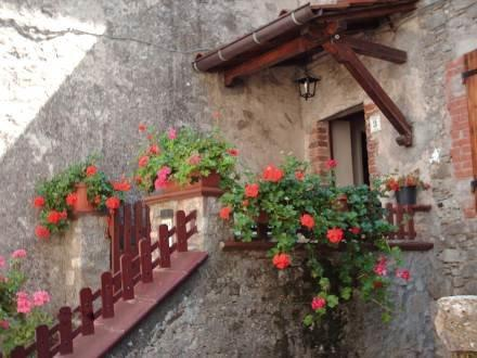 Casa La Quercia ~ RA33974 - Image 1 - Colognora - rentals