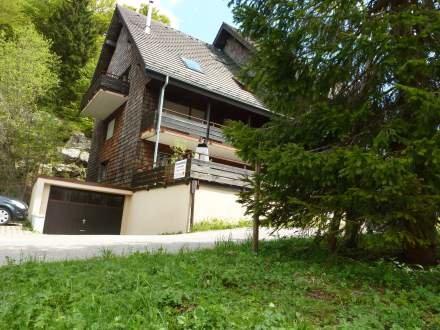 Wohnung Zirlewagen ~ RA13379 - Image 1 - Menzenschwand-Hinterdorf - rentals
