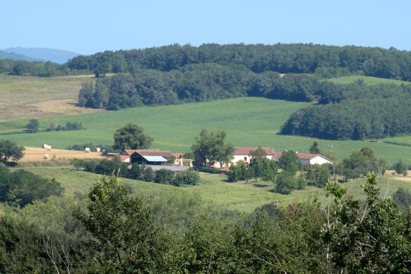 Matras - gîtes a 12 km de Marciac - Labatut-Riviere - rentals