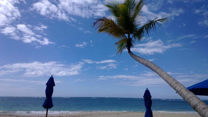 Beautiful Pristine Private Beach with Bar/Restaurant, Showers, Bathrooms, lounge chairs, umbrellas - Luxurious Secure 3BDRM Penthouse Beach/Golf Condo - Puerto Plata - rentals