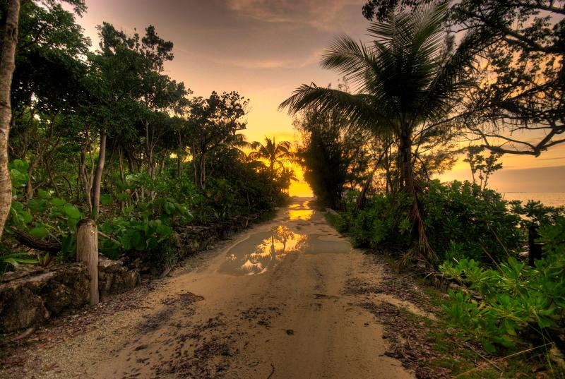 Road leading to house - The Cottage, Abaco, Bahamas - Marsh Harbour - rentals