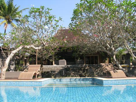 GARDEN & POOL - VILLA JODHPUR-UMAH D'KALI  YOGYAKARTA - Yogyakarta - rentals