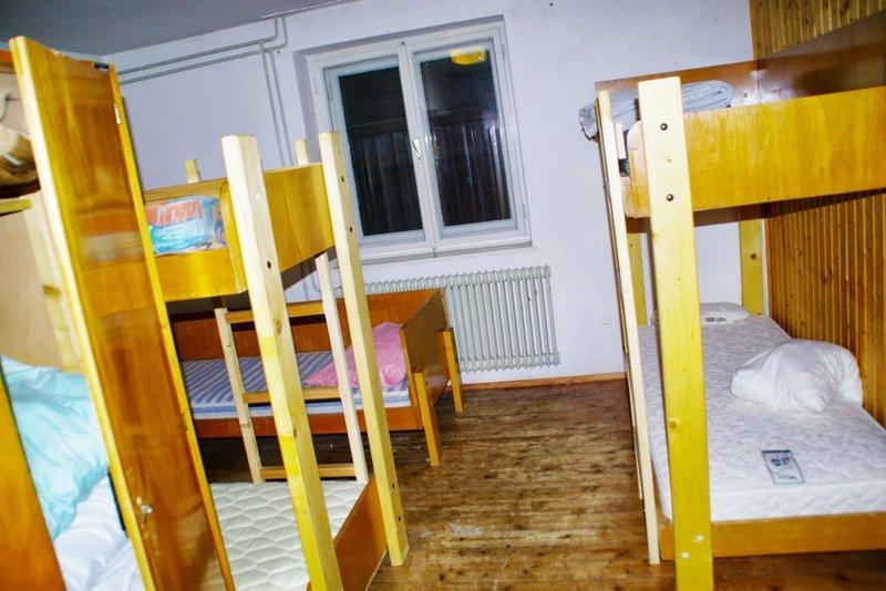 Pokljuka cottage - Image 1 - Krnica - rentals