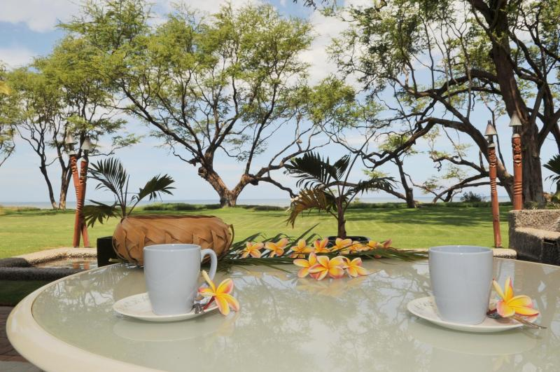 Enjoy the food and the view.... - AlohaAKU 2- HONU Suite, Beachfront,1 BR/1B/LR/Kit - Kihei - rentals