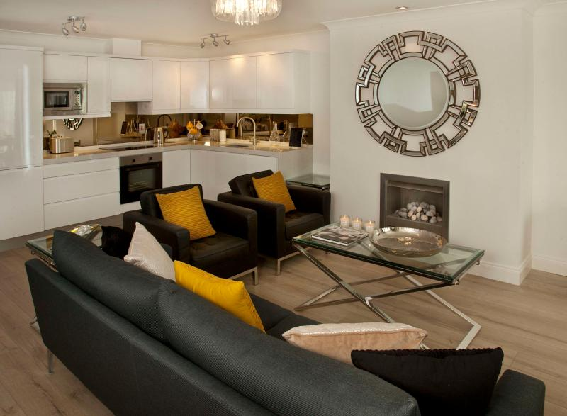 Large open plan living area with gas fireplace - Luxury Views perfect location for Shops Beach Pubs - Dublin - rentals