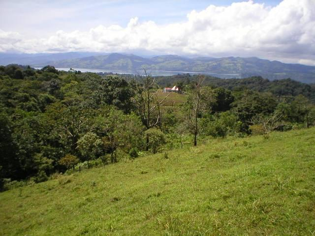 Jungle forrest and lake view - Studio Apartment / Cabina with perfect lake view - Guanacaste - rentals