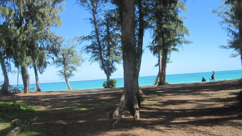 5 minute walk gets you here - Waimanalo Beach - Waimanalo - rentals