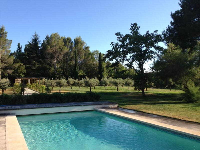 pool and back garden olive grove - St Remy de Provence beautiful 18th century farm house on large grounds sleeps 10 - Saint-Remy-de-Provence - rentals
