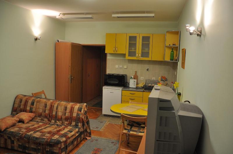 Apartman na Zlatiboru (mountain Zlatibor apartment - Image 1 - Zlatibor - rentals