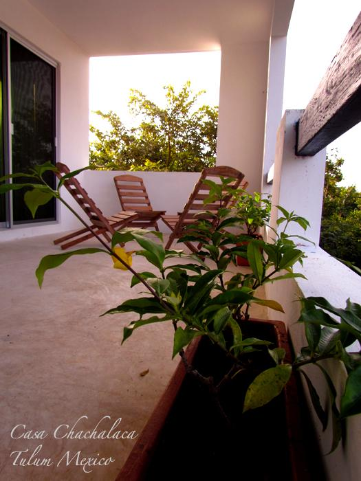 Relax on your private terrace - Casa Chachalaca- 2 Bedroom Apartment - Tulum - rentals