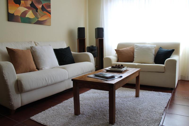Living room - Sunny 2 bedroom2bath - Port Wine area - Vila Nova de Gaia - rentals
