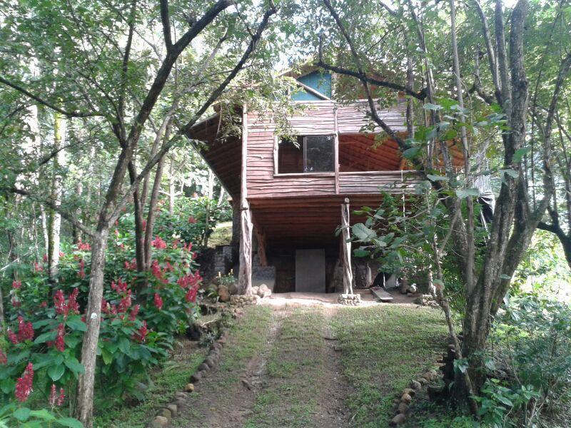 Samara Monkey Villa - Image 1 - Ciudad Colon - rentals