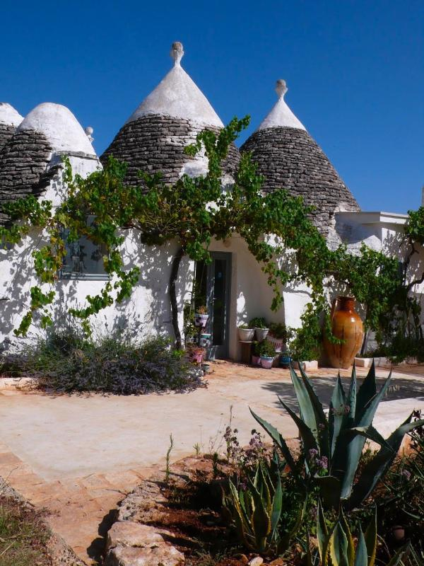 the Trullo - Beautiful  house-Trullo  in Puglia,Italy - Martina Franca - rentals