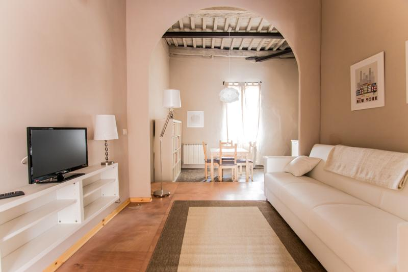 Apt with terrace in the heart of town - Image 1 - Lucca - rentals