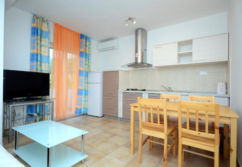 Apartments Željko - 41211-A2 - Image 1 - Podstrana - rentals
