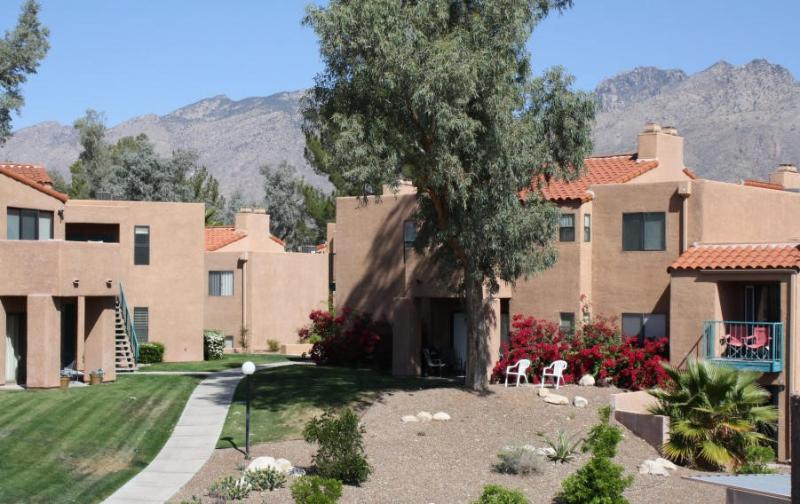 Amazing Mountain Views! Enjoy Resort style living! (MINIMUM 30 DAY STAY) - Image 1 - Tucson - rentals