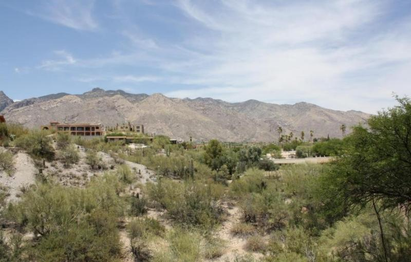 You will not find better mountain views in Tucson! (MINIMUM 30 DAY STAY) - Image 1 - Tucson - rentals