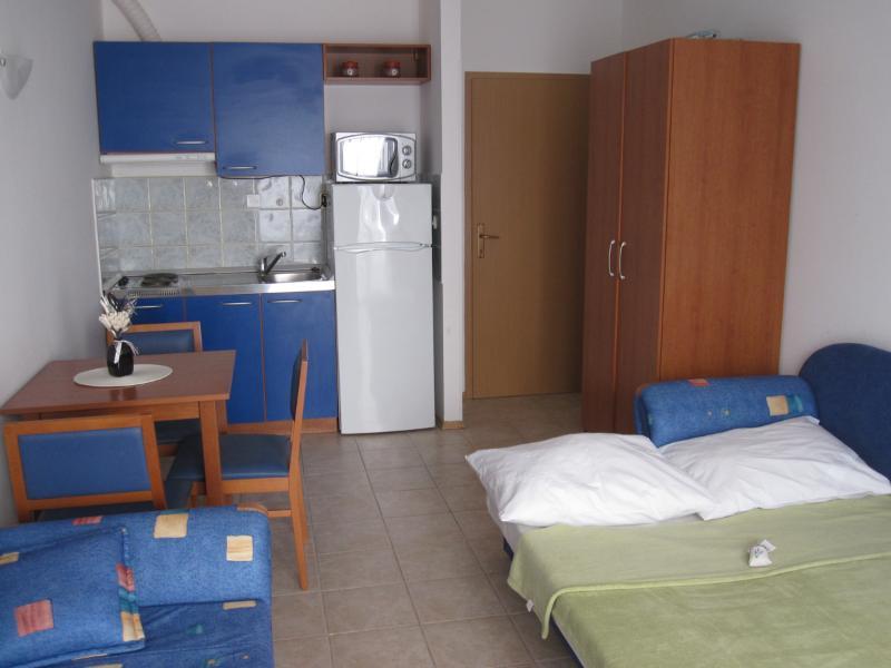 Apartment Joško - 45541-A1 - Image 1 - Necujam - rentals