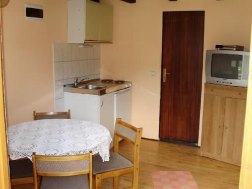 Apartment Andrijana - 80102-A2 - Image 1 - Vrelo Korenicko - rentals