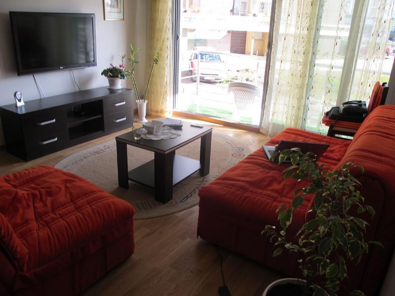 Apartment Stanka - 92031-A1 - Image 1 - Budva - rentals