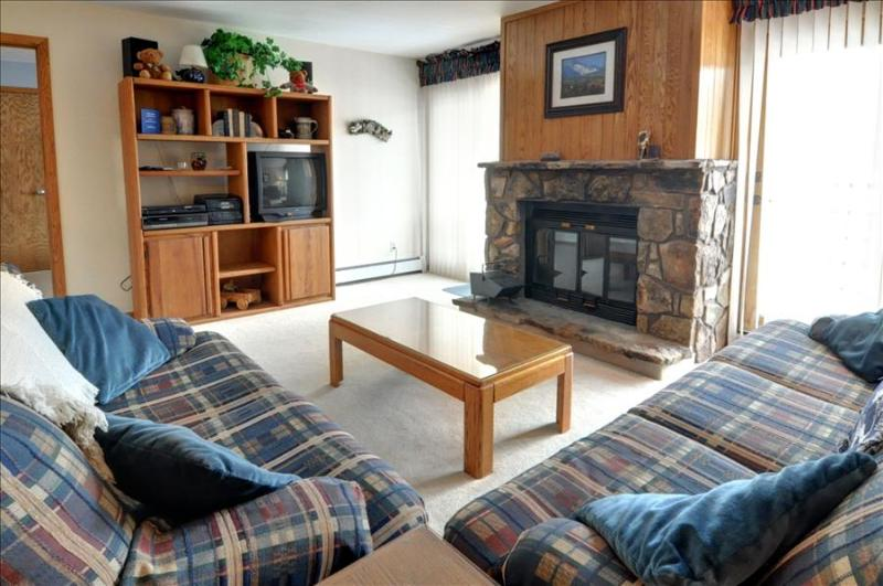 BUFFALO VILLAGE 306: 2 Bed/2 Bath, Comfortable & Affordable, Elevator, Clubhouse, Lots of Trails Nea - Image 1 - Silverthorne - rentals