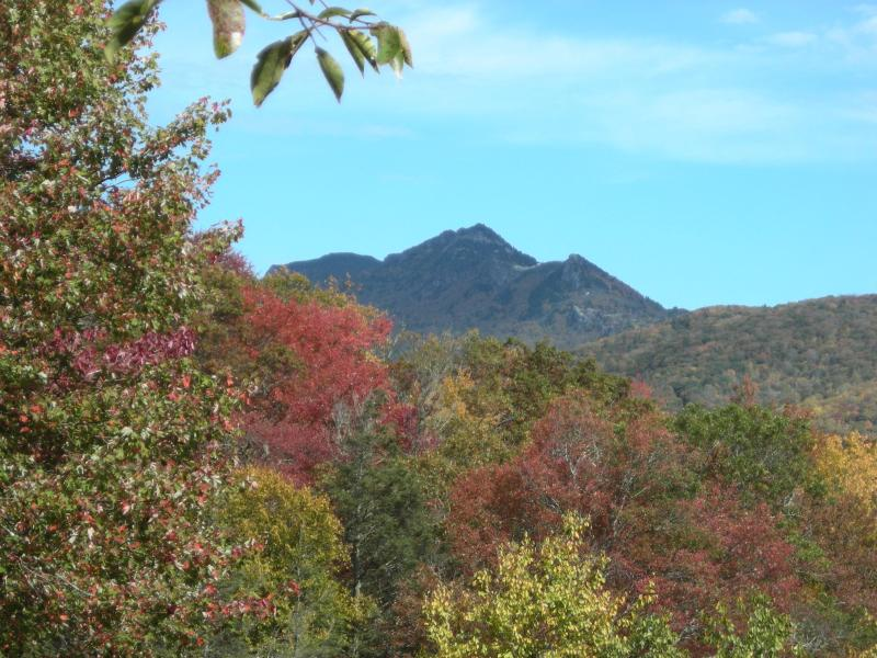 Grandfather Mtn from deck - Gorgeous view of Grandfather Mountain - Linville - rentals