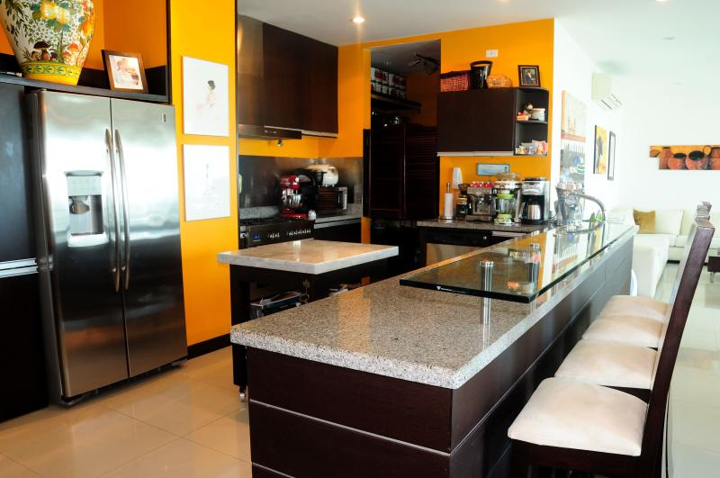 Magnificient Ocean Front Penthouse: - Image 1 - Cartagena - rentals