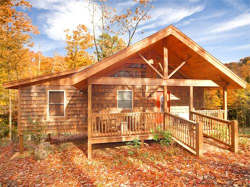 Outside view of cabin in the fall - Turkey Feathers - Sevierville - rentals