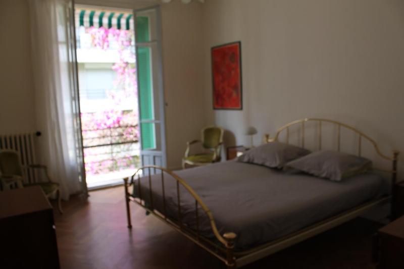 IMG_2619.JPG - LARGE 2 BEDROOM APARTMENT IN HEART OF NICE - Nice - rentals