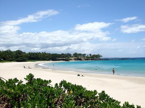 Beautiful beaches within minutes from the house - The Great Kona Escape - Minutes from the Beach  AC - Kailua-Kona - rentals