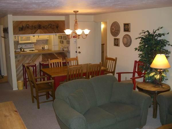 Chateaux #406 - Image 1 - Crested Butte - rentals